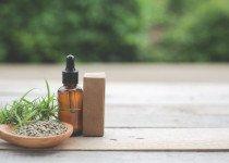 CBD, la molécule naturelle issue du chanvre (Cannabis sativa L.)